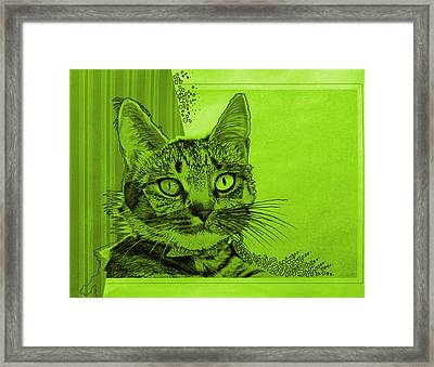 Green Sanguine ... Abstract Cat Art Painting Framed Print by Amy Giacomelli