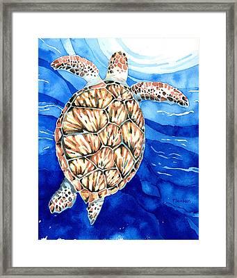 Green Sea Turtle Surfacing Framed Print