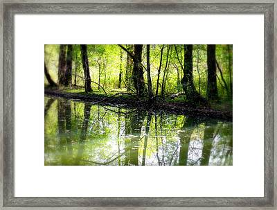 Green Shadows Framed Print