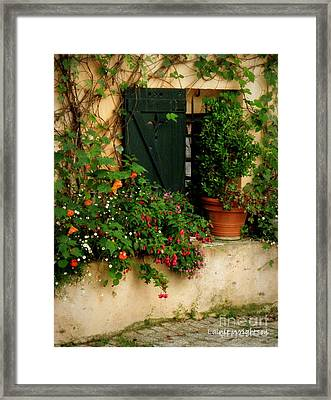 Green Shuttered Window Framed Print by Lainie Wrightson