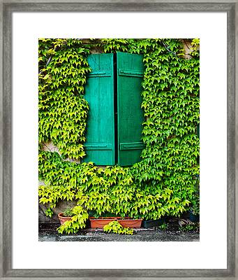Green Shutters And Ivy In Riquewihr France Framed Print