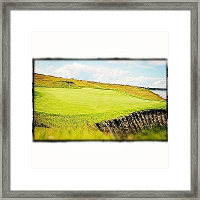 Green Side Framed Print