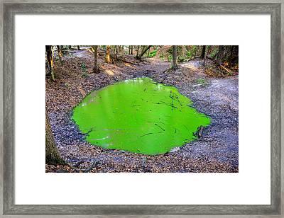 Green Spill Framed Print by David Lee Thompson
