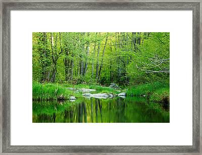 Green Strandzha Framed Print
