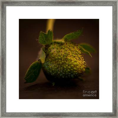 Green Strawberry Square Framed Print by Patricia Bainter