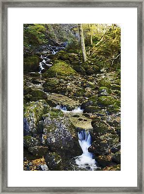 Green Stream  Framed Print by Julie Smith