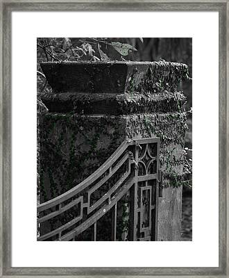 Green Framed Print by Tara Miller