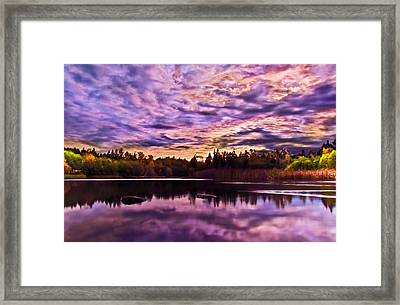 Green Timbers Park At Sunset Framed Print