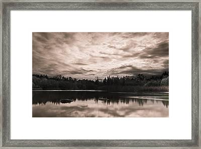 Green Timbers Park At Sunset - Sepia Framed Print