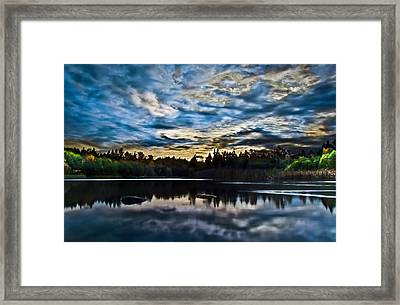 Green Timbers Park With Blue Sunset Framed Print