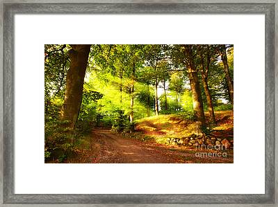 Green Trees Framed Print by Boon Mee