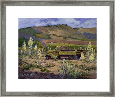 Green Truck- Blooming Yuccas Framed Print