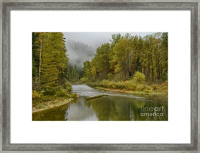 Green Turns To Gold Framed Print by Idaho Scenic Images Linda Lantzy