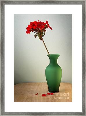 Green Vase Framed Print by Donald Davis