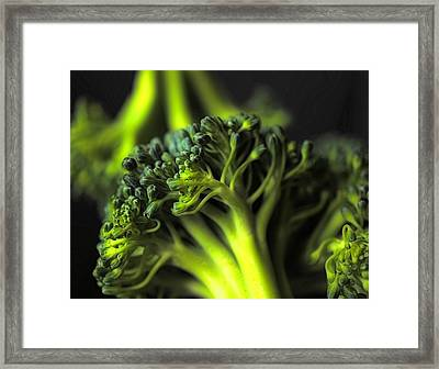 Green Vegetables Framed Print by Jenny Hudson
