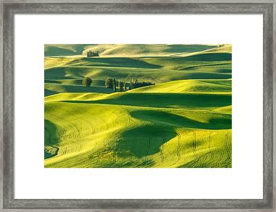 Green Velvet Framed Print by Patricia Davidson