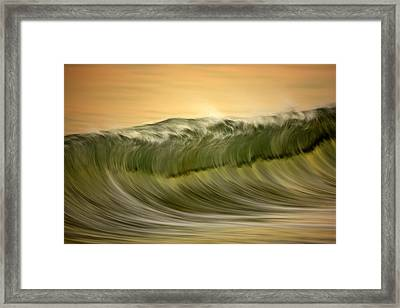 Green Wave #2  C6j7496 Framed Print by David Orias