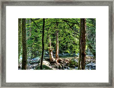 Greenbriar Landscape Framed Print by Barry Jones