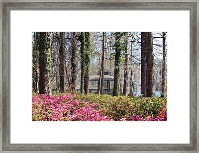 Greenfield Park And Lake Framed Print by Cynthia Guinn