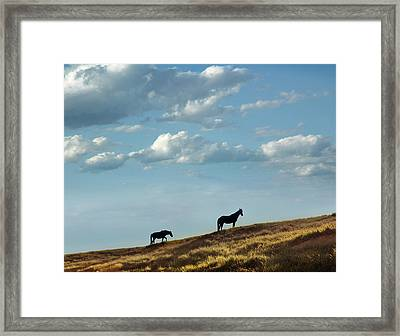Greenwood County Grazers Framed Print