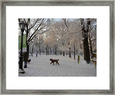 Greeting Friends In Central Park Framed Print by Winifred Butler