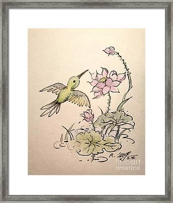 Greeting Hummingbird Framed Print