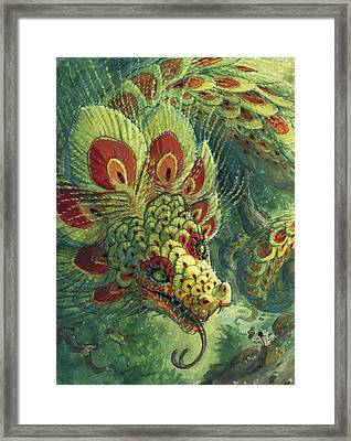 Greeting The Quetzalcoatl Framed Print by Jaimie Whitbread