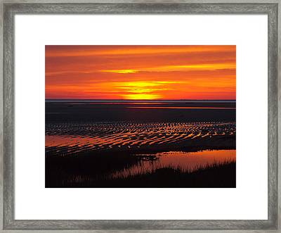 Framed Print featuring the photograph Greetings by Dianne Cowen