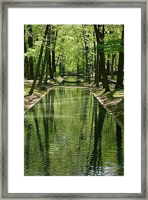 Gren Green Framed Print by Iryna Soltyska