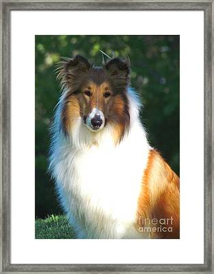 Greta Grace Framed Print by Deborah Johnson