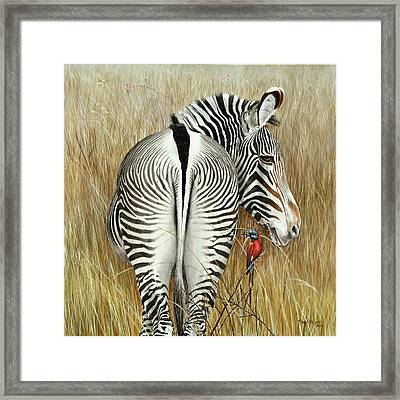 Grevy And The Bee Eaters Framed Print