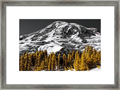 Grey And Gold Framed Print by David Stine