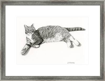 Frieda Framed Print by Sarah Batalka