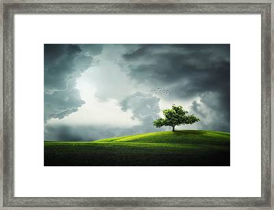 Grey Clouds Over Field With Tree Framed Print