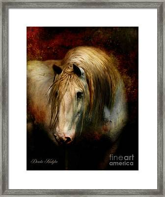 Grey Dignity Framed Print by Dorota Kudyba