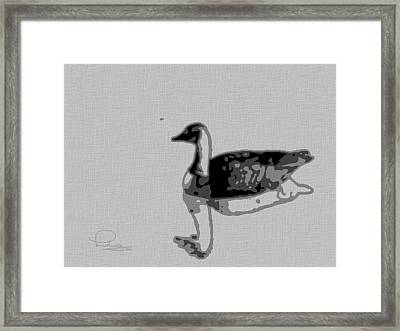 Framed Print featuring the photograph Grey Goose by Ludwig Keck
