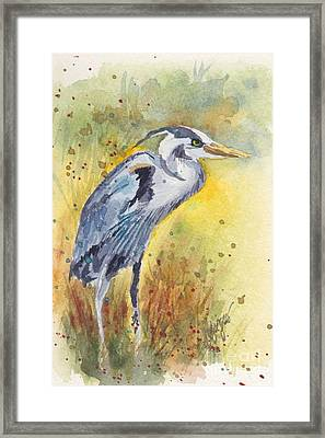 Grey Heron Langley Wa Framed Print