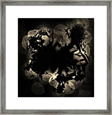 Grey Matter Framed Print by Tara Miller