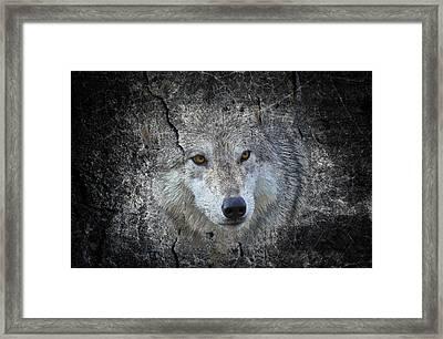 Grey Stone Framed Print