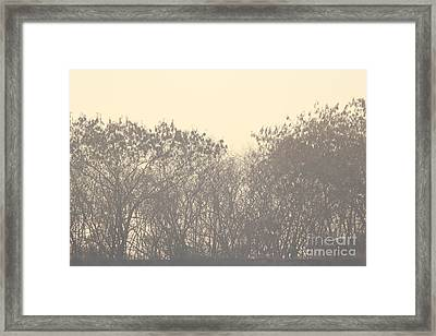 Grey Framed Print by Vishakha Bhagat