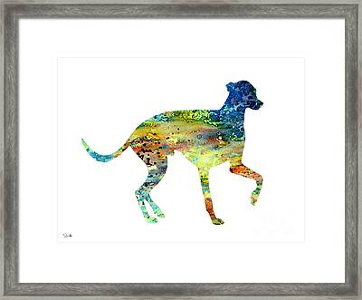 Greyhound 3 Framed Print by Watercolor Girl