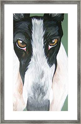 Greyhound Eyes Framed Print