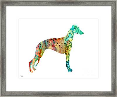 Greyhound  Framed Print by Watercolor Girl