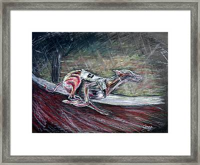 Greyhound Number Three Framed Print