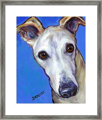 Greyhound Portrait On Blue Framed Print by Dottie Dracos