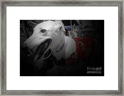 Greyhound Rescue 8 Framed Print