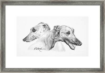 Greyhounds For Two Framed Print by Roy Anthony Kaelin