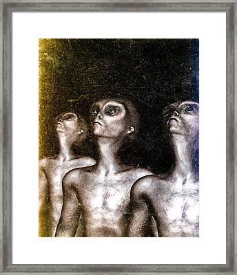 Greys Framed Print