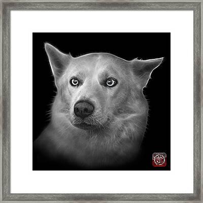 Greyscale Mila - Siberian Husky - 2103 - Bb Framed Print by James Ahn