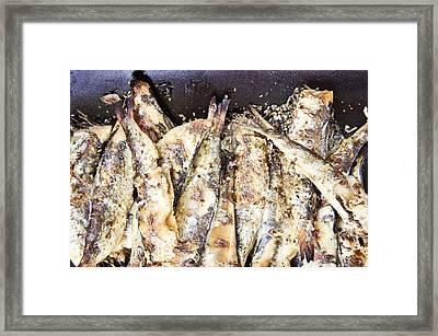 Grilled Sardines Framed Print
